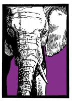 10_elephant-copy.jpg